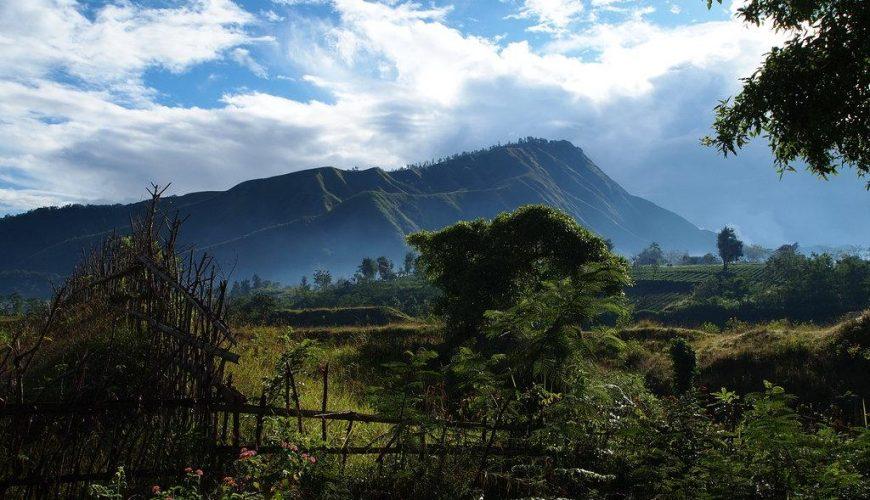 اندونيسيا 4 نجوم قياسية