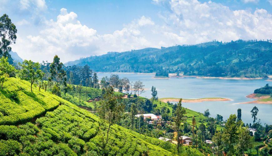 Sri Lanka 4 Stars Standard
